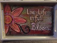 live-life-tray